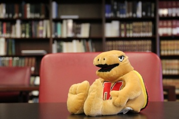 Picture of Testudo in the Special Collections