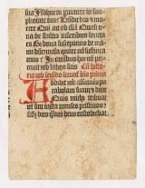 Folio 21 verso