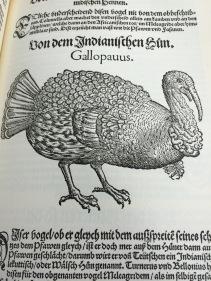 'Vogelbůch', 1557 (Facsimile, 1969)